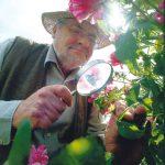 in memoriam Peter Beales