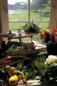 Hex15 jardinier-maraîcher waag